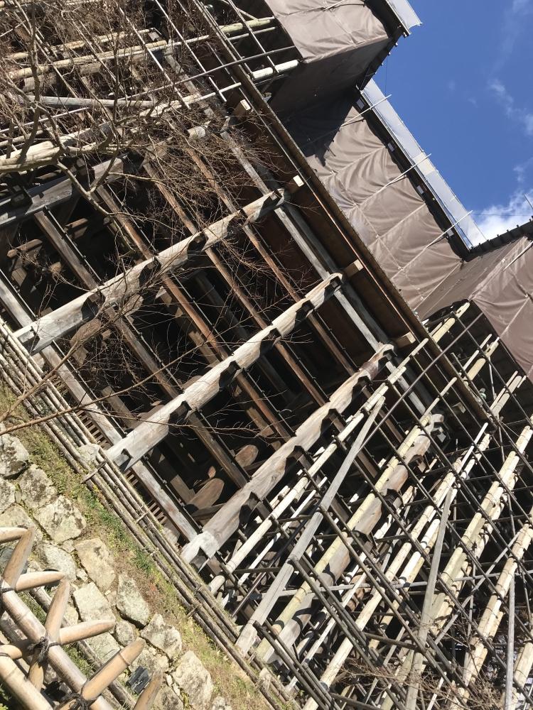 なぎさ|in京都の旅⛩ (2日目)