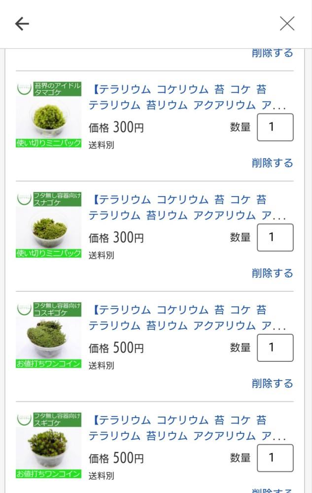 かつき|苔を買おうとする女