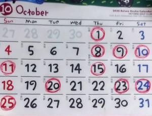 糸井 ゆかり ゆかりのカレンダー♪