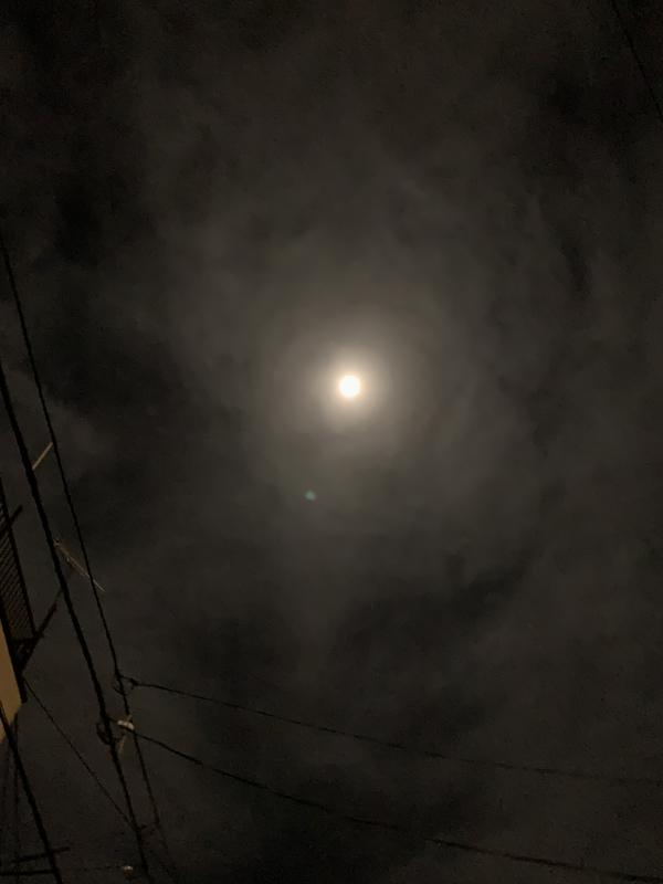 月嶋 ひかる|219☆花粉が🤧
