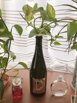 Kana|シャンパンの瓶に……