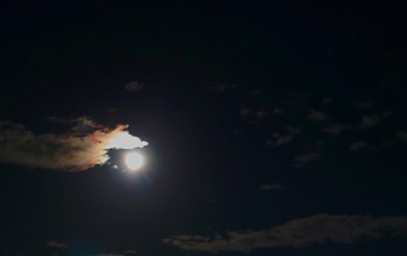 かすみ|月がきれいですね🌕✨No.10