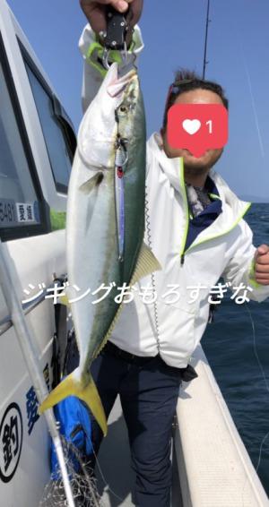 マサキ 鰹(カツオ)