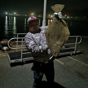マサキ 蛸(タコ)